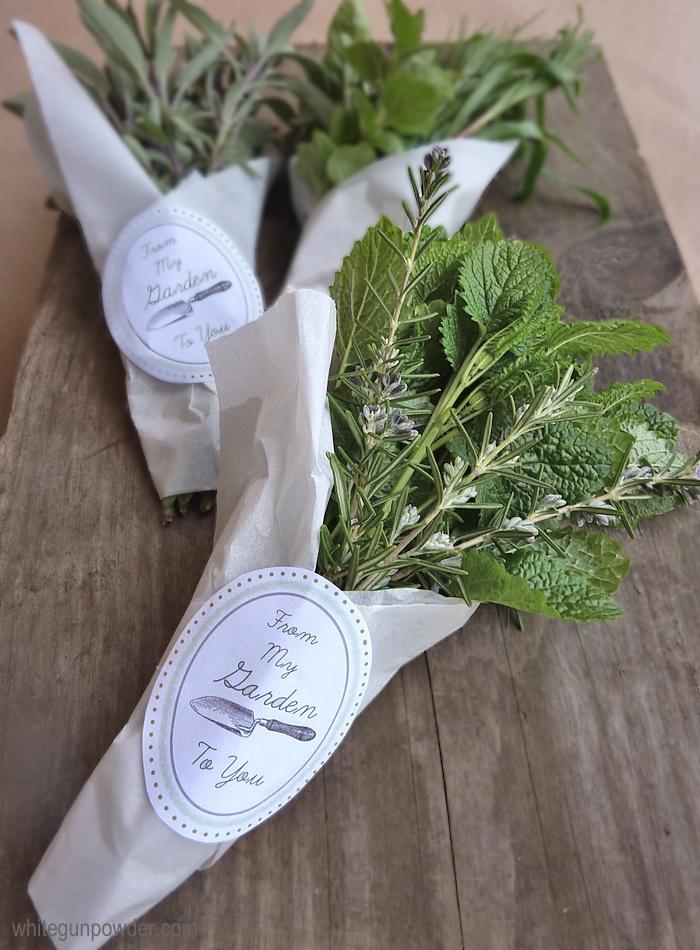 Fresh Herb Garden : Fresh herbs white gunpowder