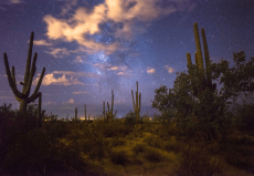 Whitney FitzPatrick - Landscape Photography - Color - Editorial Photography