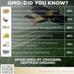 GMOs are a hot topic in the health and wellnesshellip