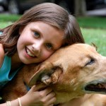 How Old Is Your Dog ? – In Human Years