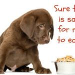 What is Hiding in Your Dog's Food?