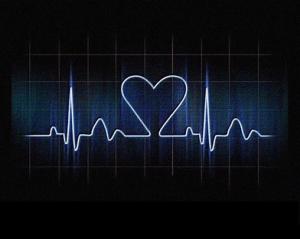 Pregnancy, Baby, Heart, Circulatory, Brain, Development, Pro-Choice, Abortion, Pro-Life