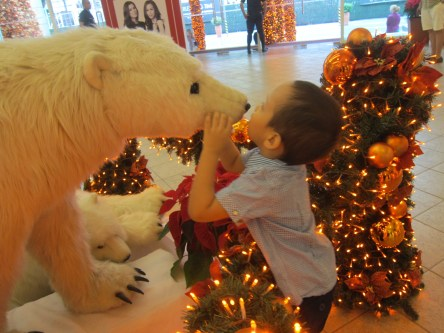 Polar Bear Kisses