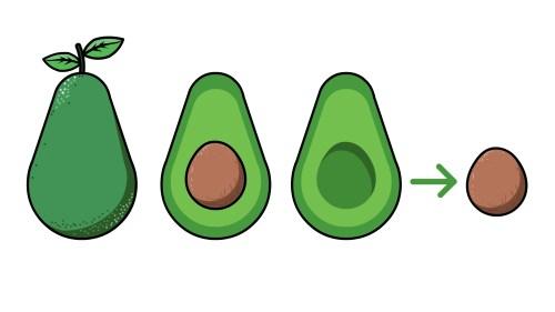 Medium Of How Long Do Avocados Last