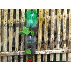Voguish Build A Vertical Garden From Soda Bottles Step 17 Soda Bottle Vertical Garden