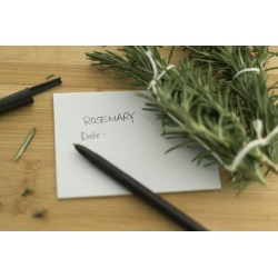 Small Crop Of How To Harvest Rosemary