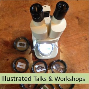 wildlife talk workshop London