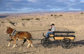 Cowboys and Wagon