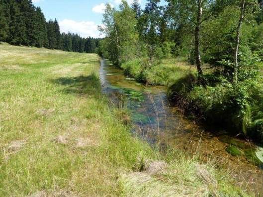 vor der Renaturierung©Naturpark Bayerischer Wald_A-Hofmann