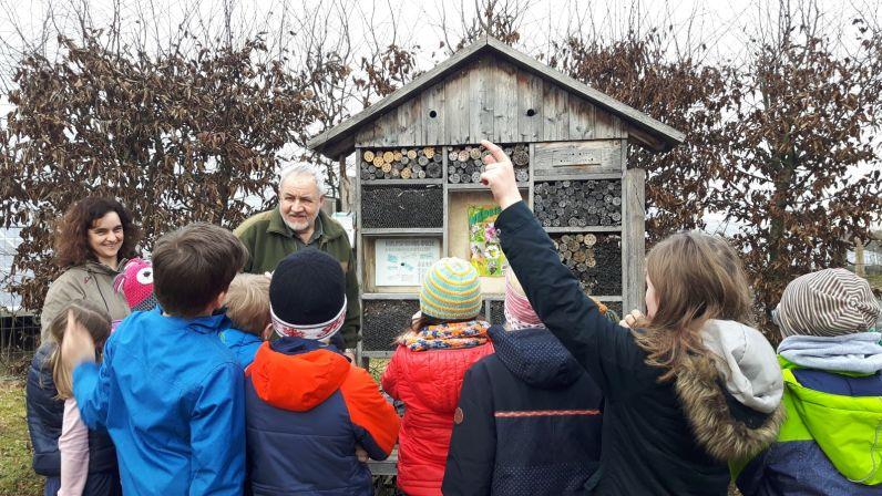 Die Kinder wissen, dass sich Wildbienen gern ein Plätzchen im Insektenhotel suchen.