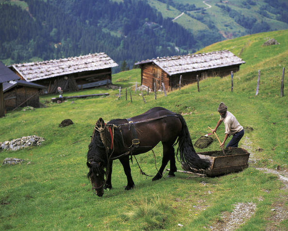 Ort: Wildschönau (Ort)