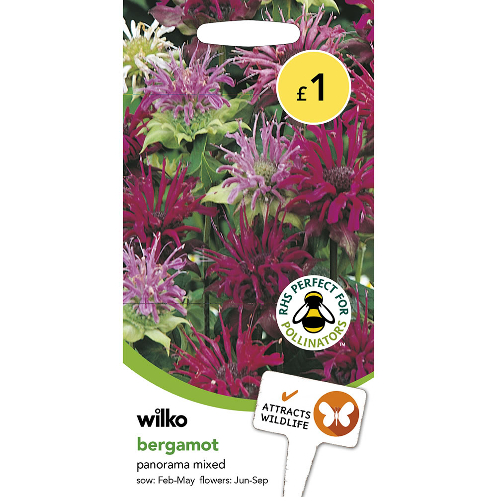 Deluxe Wilko Seeds Bergamot Panorama Mixed Image Wilko Seeds Bergamot Panorama Mixed Wilko Bee Balm Seeds Harvest Red Bee Balm Seeds houzz-02 Bee Balm Seeds
