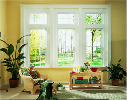 double hung windows view