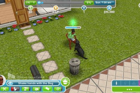 sims freeplay wp8 dog shake ?itok=z5cmsbav