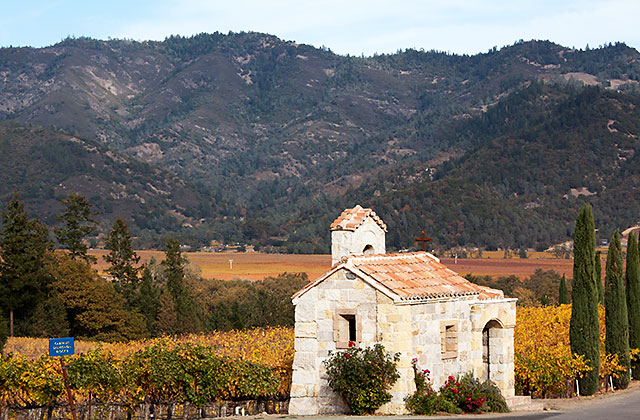 Napa valley fall colors wine country getaways for Best time to visit napa valley wine country