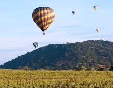 hot air balloons take off in the napa valley