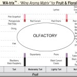 Beyond the Wine Aroma Wheel: 'Wine Aroma Matrix' pairs Olfactory with Vision