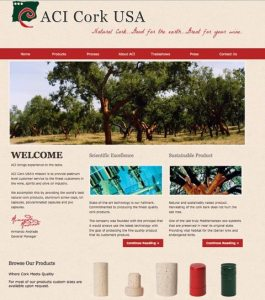 ACI Cork website