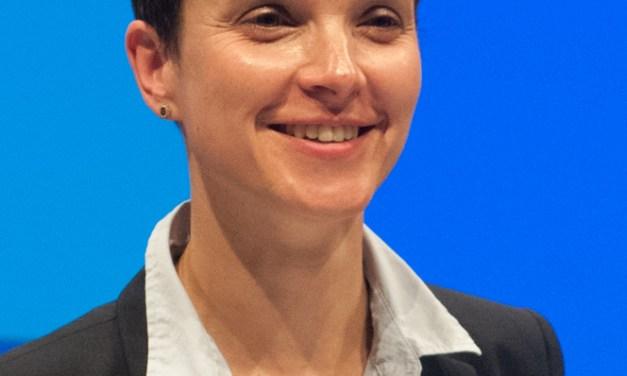 Aussagen von Frauke Petry und Uwe Junge der AfD stoßen auf heftige Kritik