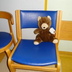 Teddy wartet auf den Doc