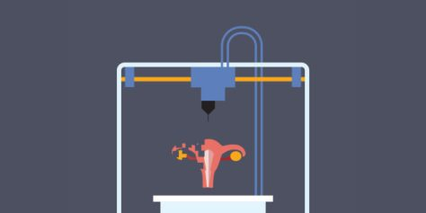 Scientists 3-D Print Mouse Ovaries That Actually Make Babies