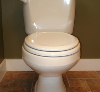 images_-_wigwag_-_toilet