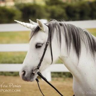 White Unicorn Horn for Pony