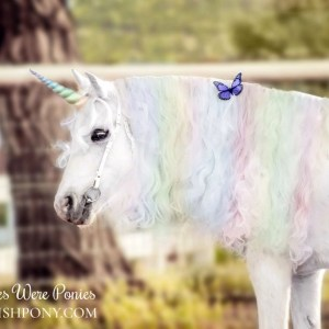 Pastel Rainbow Unicorn Horn for Horse Pony