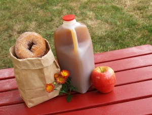 fall scene - apple cider donuts and an apple
