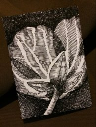 """BLOSSOM 