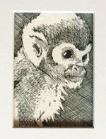 """CONSIDER 