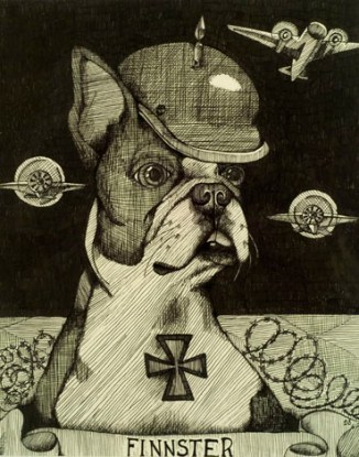 """FINNSTER 