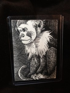 """MONKEY 1 