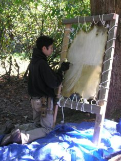 Scraping A Deer Hide in preparation for Traditional Brain Tanning