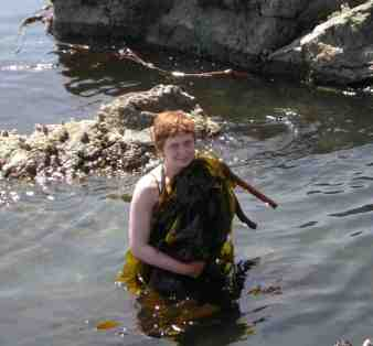Wolf College Student Collecting Bullwhip Kelp