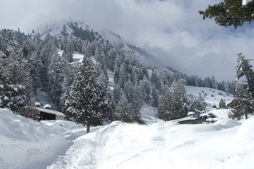 NathiaGali snowfall