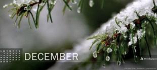 Digital Calendar: December 2014