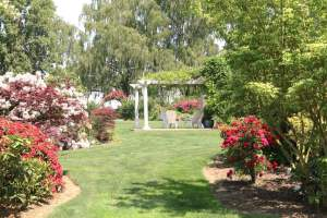 Event-Rental_15_grounds