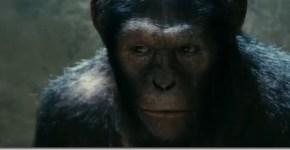 El-planeta-de-los-simios-2011_thumb.jpg