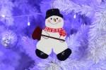 28-11-2012-foto-navidad_thumb.jpg
