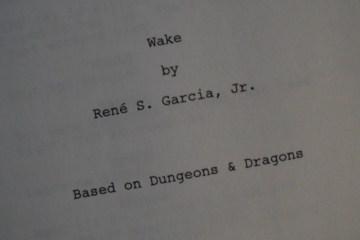 wake_screenplay