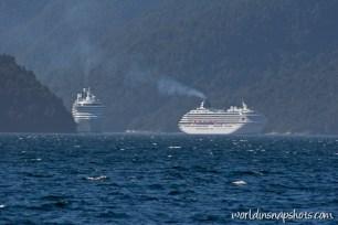 Cruise ships at Doubtful Sound