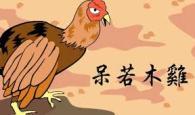 chicken5