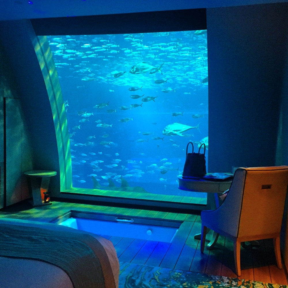Sleeping in an aquarium at the equarius hotel singapore for Fish hotel tank