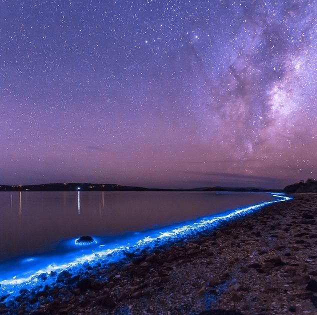 Sea Sparkles