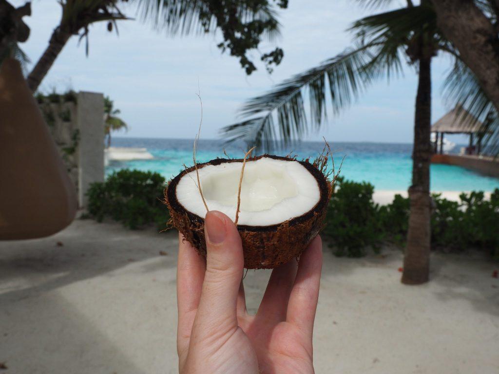 Coconut in the Maldives