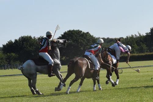 wow saddle (2)
