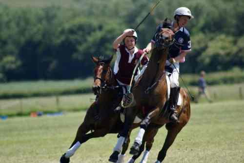 wow saddle (7)
