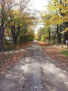 A Saugeen Lane - to remind me that I have to get moving toward my goal.