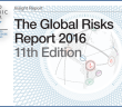 Global Risk Report Title